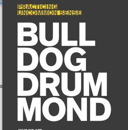 Bulldog drummond guest post resolutions 2011